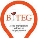 Biteg al Broletto di Novara dal 15 al 18 maggio