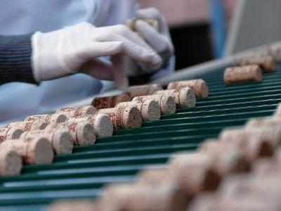 Amorim Cork Italia: eccellenza riconosciuta a livello mondiale