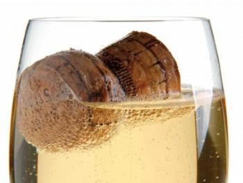 Ndtech® di Amorim Cork: il successo della perfezione sensoriale