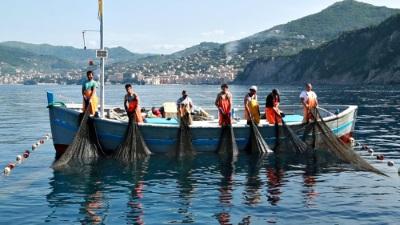 I piatti solidali di Eataly per la Tonnarella di Camogli distrutta da una nave pirata