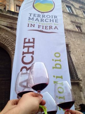 Torna ad Ascoli la fiera Terroir Marche, ecco il programma completo