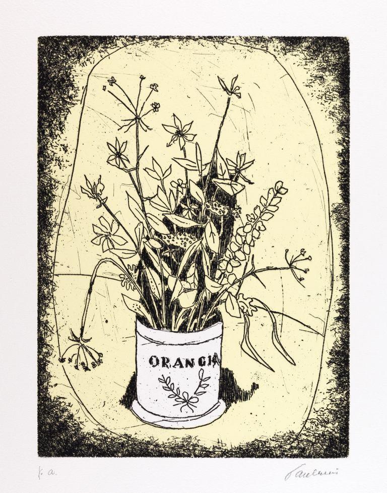 1. Enrico Paulucci Vaso con piante officinali, 1987 240 x 180 mm acquaforte su zinco a 2 colori