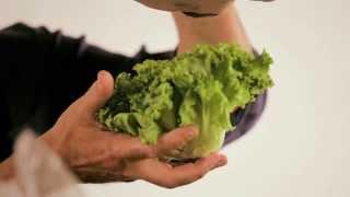 L'insalata è salute