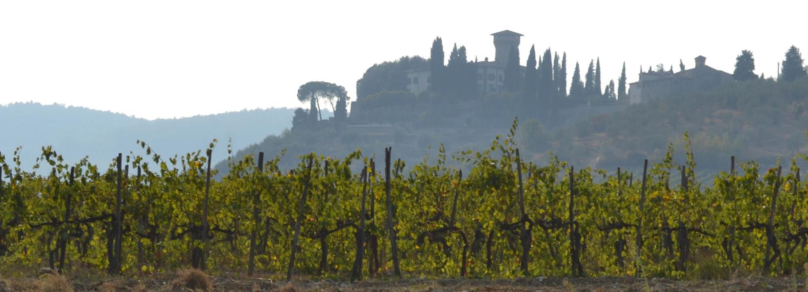 Premi nazionali e internazionali per il Castello Vicchiomaggio