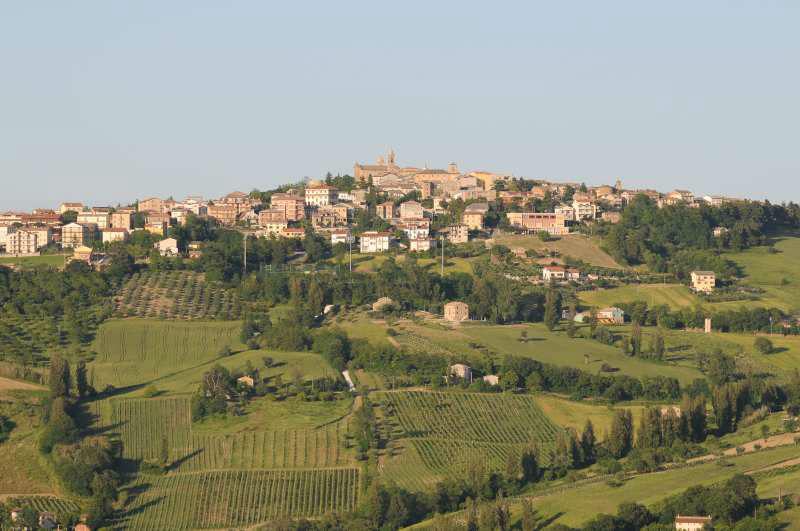 Il Vino di Cupramontana diventa un prodotto De.Co.