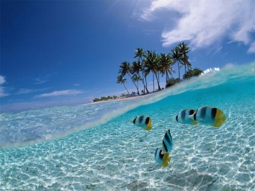spiaggia di cuba