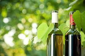 Bottiglie di vino biologico