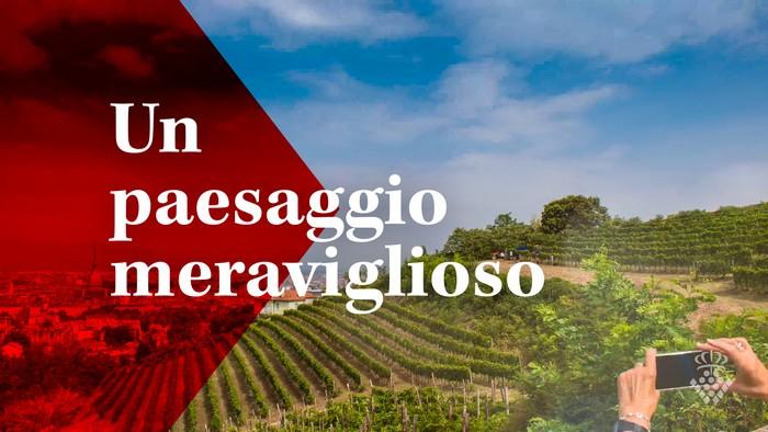 Paesaggio Unesco Piemonte