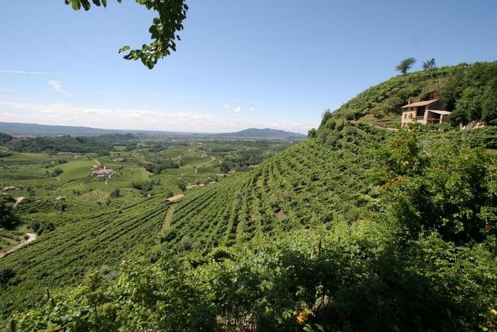 Cartizze detta Mont del Cartizze