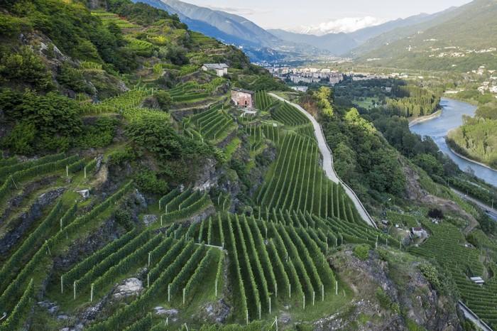 Valtellina: Cru Sommarovina di Mamete Prevostini