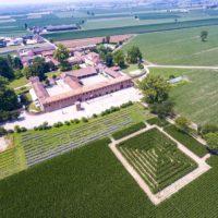 L'Estate green di Tenuta Berroni