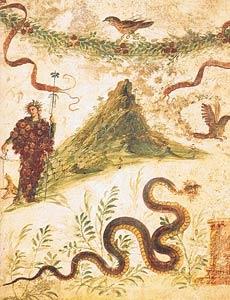 Monte Vesuvius, Museo Archeologico Napoli