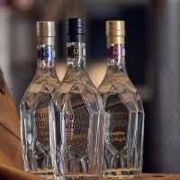 Nuove Purity Vodka di Sagna