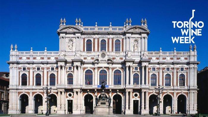 Palazzo Caringnano_Salone del Vino