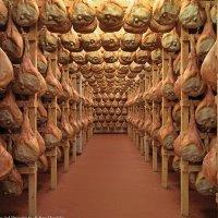 Aria di San Daniele: 6 serate evento a Torino col Prosciutto Dop