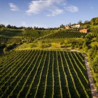 Strada del vino e sapori della Bergamasca