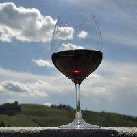 Festival Agrirock di Barolo: grandi vini e le eccellenze gastronomiche da tutta italia