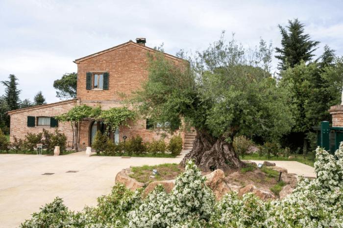 Azienda vinicola Podere Casanova a Montepulciano in Toscana