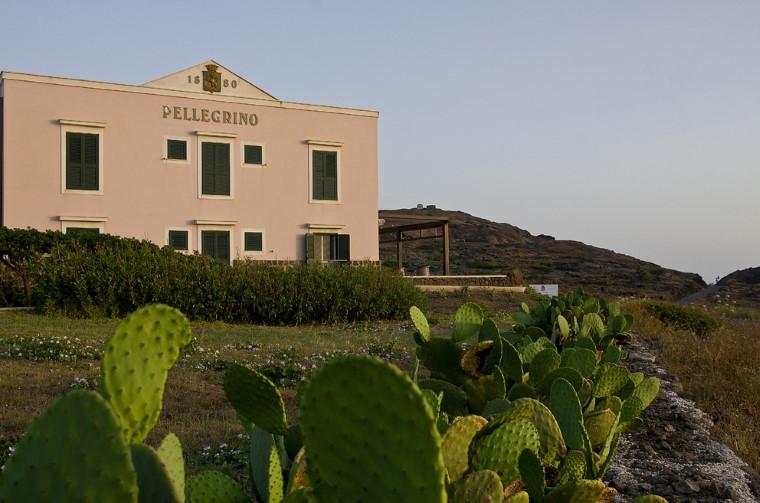 cantina Pellegrino a pantelleria