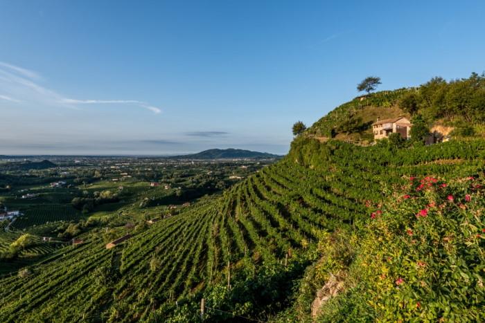 colline-conegliano-valdobbiadene-col-vetoraz