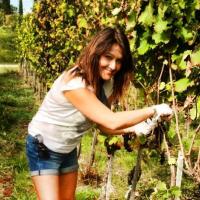 """Il libro """"Vino prêt-à-porter"""" di Francesca Negri in tutte le librerie d'Italia"""
