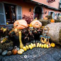 """""""Fuori di Zucca"""" il 17 e 18 ottobre a Santa Maria Maggiore, in Valle Vigezzo"""