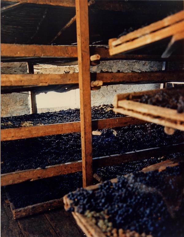 graticci in fruttaio per appassimento uve da Amarone