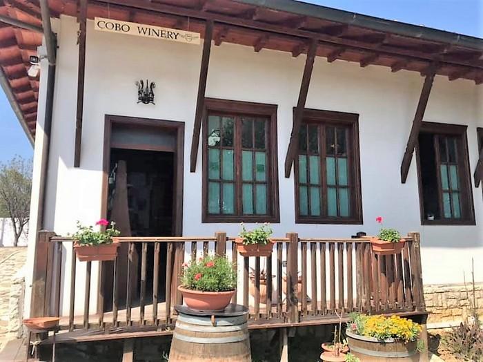 ingresso Cobo winery