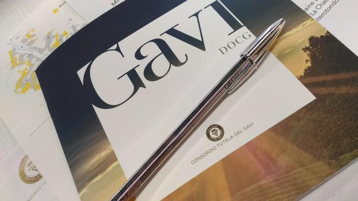 masterclass-gavi