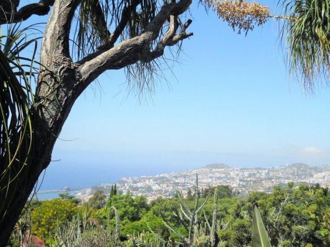 Madeira: panorama sulla baia di Funchal
