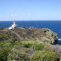 Pantelleria Doc Festival – Alla scoperta dell'Isola e dei suoi vini