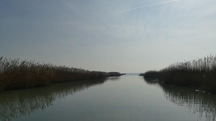 Delta del Po Veneto