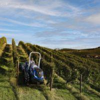 Fontanafredda e il Rinascimento Verde