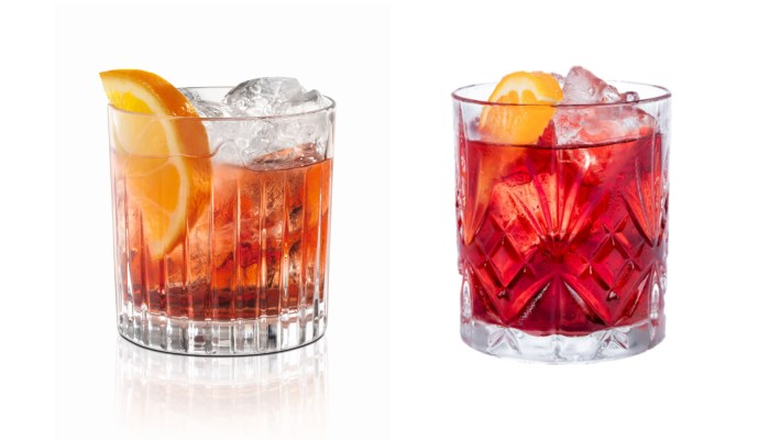 cocktail Negroni a Terra Madre