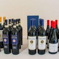 Visita e degustazione dei vini di Folonari