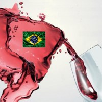 La classifica dei 16 migliori vini e spumanti del Brasile degustati da un panel di professionisti italiani